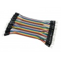 Cable macho macho 40 hilos 10 centimetros